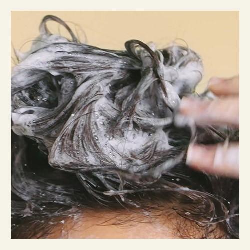 typ vlasov